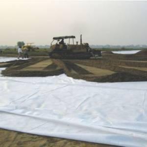 Ứng dụng vải địa trồng cây